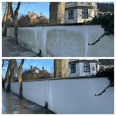 Render cleaning, algae removal