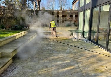 patio steam cleaning/algae removal service